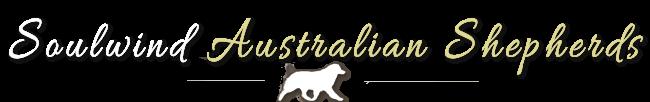Soulwind Australian Shepherds