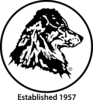 Link 4
